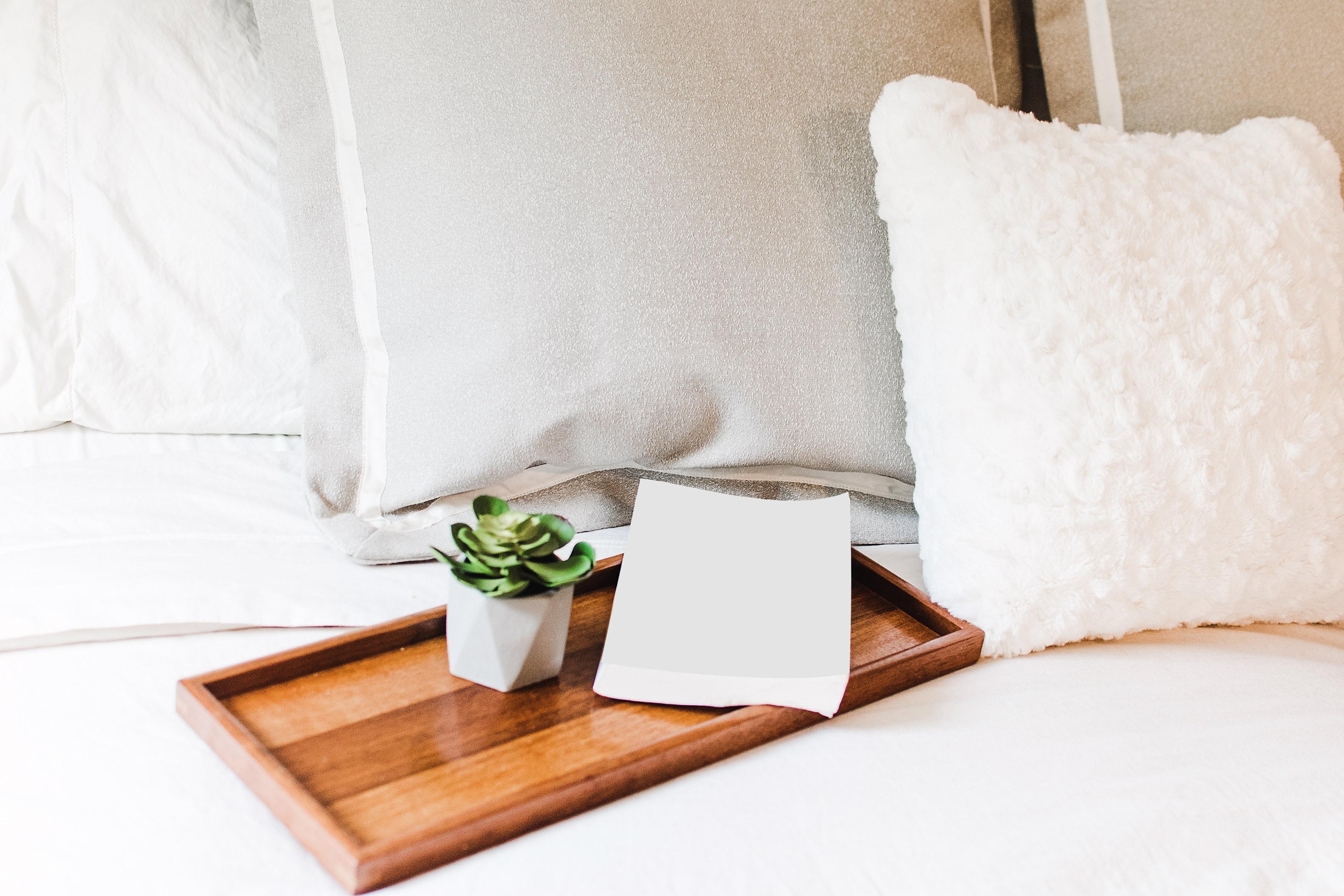 Kelig Hôtel : Hôtel cosy à l'ambiance pension de famille au coeur de Brest (Accueil)